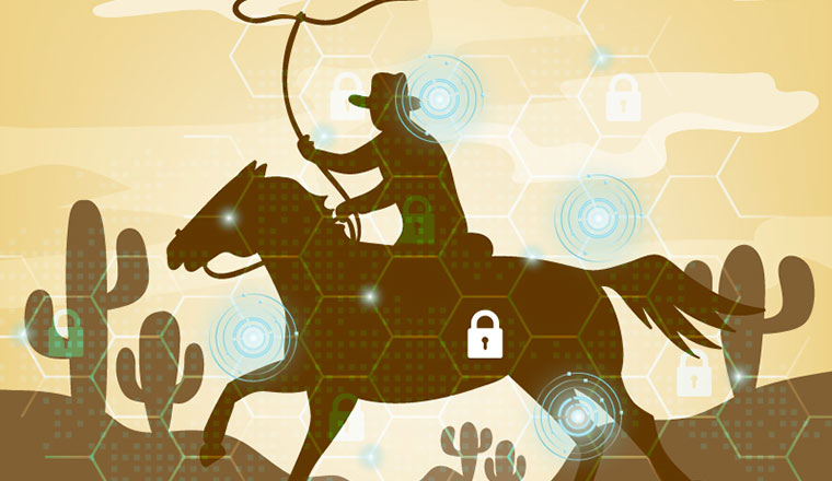 Hacking Back & the Digital Wild West